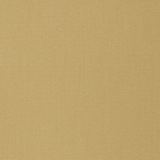 Sunshine Solid Decorator Fabric by Stroheim