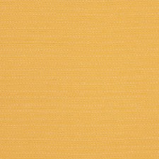 Sunflower Solid Decorator Fabric by Stroheim