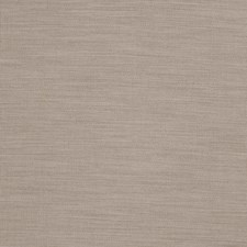 Dove Solid Decorator Fabric by Trend