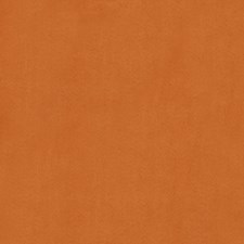 Orange Solid Decorator Fabric by Trend