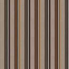 Godiva Stripes Decorator Fabric by S. Harris