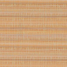 511445 DN16339 394 Mango by Robert Allen