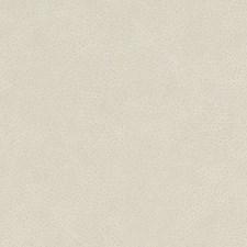 518750 DF16285 179 Quartz by Robert Allen