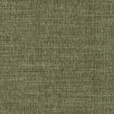 520825 DW16417 2 Green by Robert Allen
