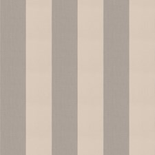 Grey Stripes Decorator Fabric by Trend
