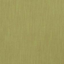 Fern Solid Decorator Fabric by Fabricut