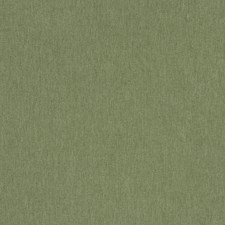 Kiwi Solid Decorator Fabric by Trend
