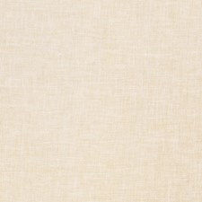 Soft Gold Solid Decorator Fabric by Stroheim