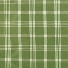 Sage Decorator Fabric by B. Berger