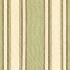 Green Tea/Mocha Decorator Fabric by Schumacher
