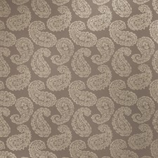 Moonstone Paisley Decorator Fabric by Stroheim