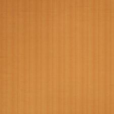 Pumpkin Texture Plain Decorator Fabric by Stroheim