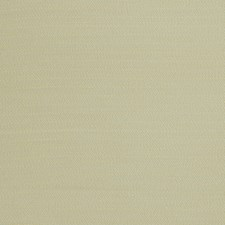 Dragonfly Solid Decorator Fabric by Stroheim