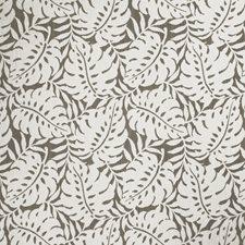 Liquorice Leaves Decorator Fabric by Stroheim