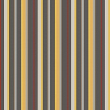 Coin Stripes Decorator Fabric by Fabricut