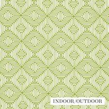 Palm Decorator Fabric by Schumacher