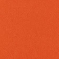Orange Decorator Fabric by Schumacher