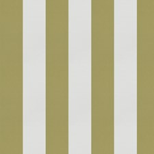 Olive Stripes Decorator Fabric by Trend