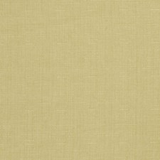 Jasmine Solid Decorator Fabric by Trend