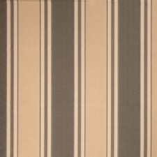 Mocha Stripes Decorator Fabric by Trend