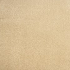 Natural Solid Decorator Fabric by Trend