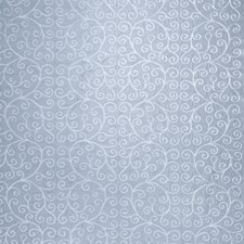 Powder Embroidery Decorator Fabric by Trend