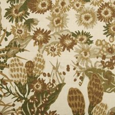 Desert All Over Decorator Fabric by Duralee