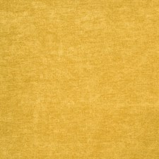Buttercup Solid Decorator Fabric by Trend
