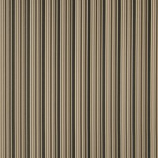 Ash Stripes Decorator Fabric by Trend