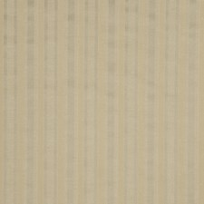 Bark Stripes Decorator Fabric by Trend