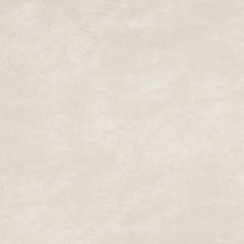 White Sand Solid Decorator Fabric by Trend