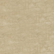 Chamois Solid Decorator Fabric by Trend
