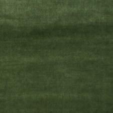 Juniper Solid Decorator Fabric by Trend
