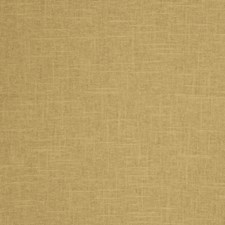 Tussah Solid Decorator Fabric by Trend