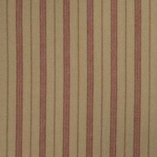 Punch Stripes Decorator Fabric by Trend