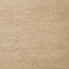 Camel Solid Decorator Fabric by Stroheim