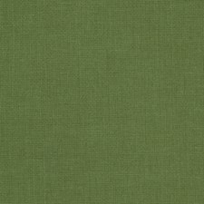 Grass Solid Decorator Fabric by Trend