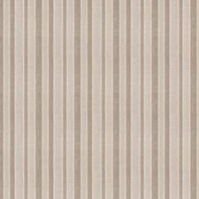 Platinum Stripes Decorator Fabric by Trend