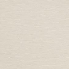 Pearl Solid Decorator Fabric by Trend