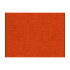 Persimmon Solids Decorator Fabric by Brunschwig & Fils