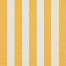 Yellow Stripes Decorator Fabric by Brunschwig & Fils