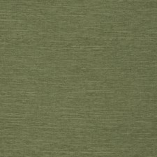 Oregano Solid Decorator Fabric by Trend