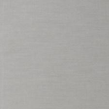 Chinchilla Solid Decorator Fabric by Stroheim
