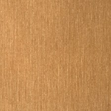 Almond Texture Plain Decorator Fabric by S. Harris