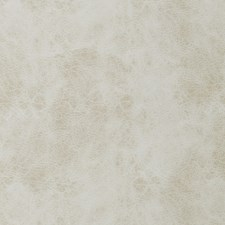 Marble Solid Decorator Fabric by Trend