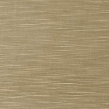 Lichen Solid Decorator Fabric by Trend