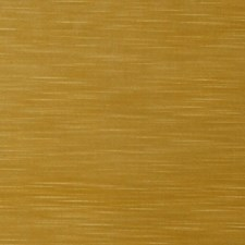 Citrine Solid Decorator Fabric by Trend