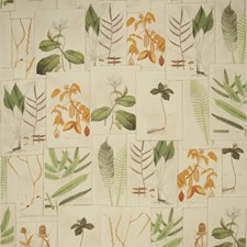 Document Leaves Decorator Fabric by Vervain
