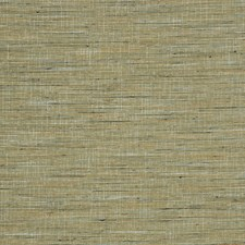Lichen Texture Plain Decorator Fabric by Trend