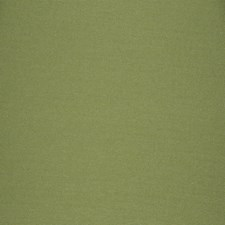 Parrot Texture Plain Decorator Fabric by Fabricut
